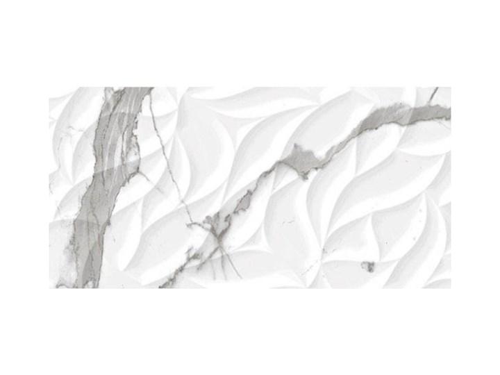 Glazura Cosmopolitan 30 x 60 cm wave 0,9 m2 30x60 cm Prostokąt Płytka bazowa Powierzchnia Polerowana Kategoria Płytki