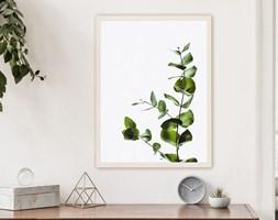 Plakat Kształt natury (21x30 cm)