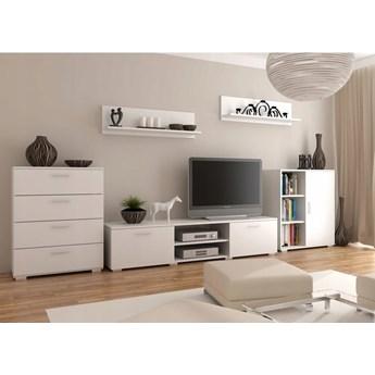 Biały zestaw salonowy komody, szafka pod TV, półki