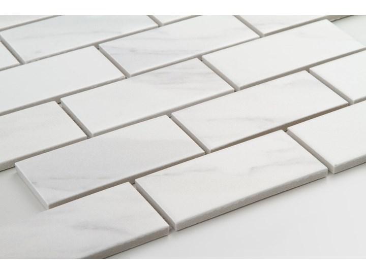 Płytka Cegiełka Xl Marble Matowa Płytka ceglana Prostokąt Gres Płytki podłogowe Płytki ścienne Mozaika Kategoria Płytki