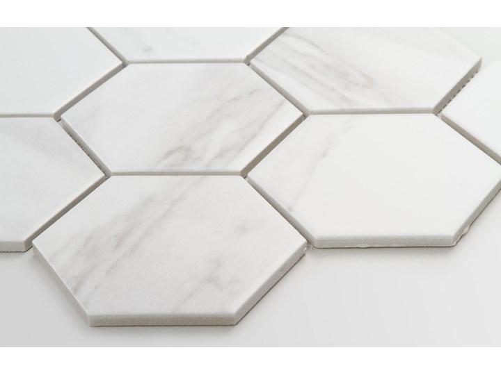 Płytka Heksagon Xl Marble Matowy Płytki podłogowe Kategoria Płytki Mozaika Płytki ścienne Gres Wzór Marmur