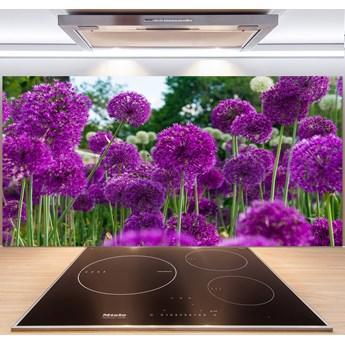 Panel do kuchni Kwiaty czosnku