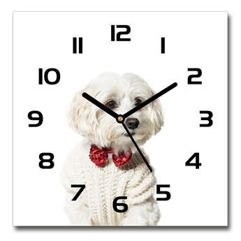 Zegar szklany kwadratowy Maltańczyk w muszce