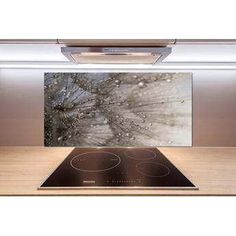 Panel do kuchni Nasiona dmuchawca