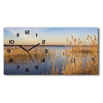 Zegar ścienny szklany cichy Trzcina wodna