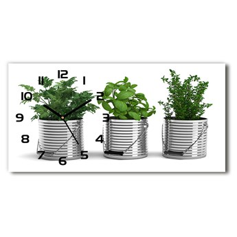 Zegar ścienny szklany Aromatyczne rośliny