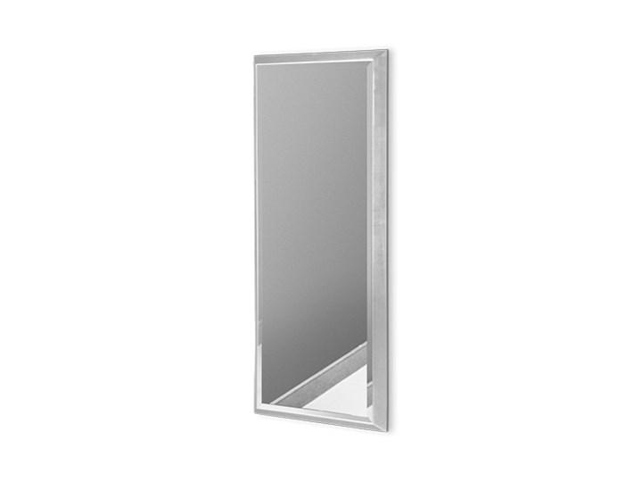 Nowoczesne lustro w srebrnej ramie 18 x 53 cm 12F-390
