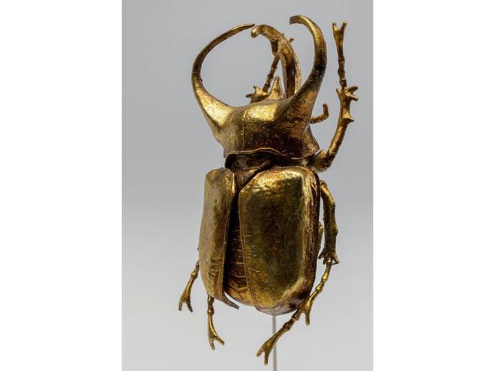 Figurka dekoracyjna Atlas Beetle 7x24 cm złota Kategoria Figury i rzeźby