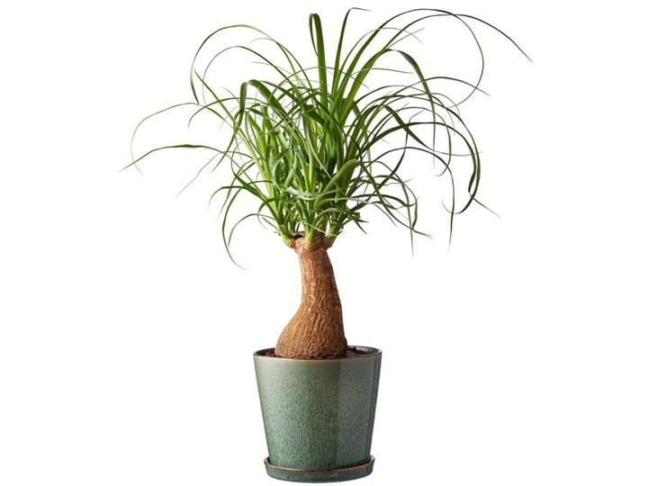 Doniczka z podstawką Bitz Ø14x13 cm zielona - środek czarny Kategoria Doniczki i kwietniki Ceramika Doniczka na kwiaty Kolor Zielony