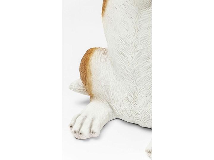Stolik kawowy Animal Mr. Jack 35x33 cm kolorowy Rozmiar blatu 33x35 cm Kolor Biały