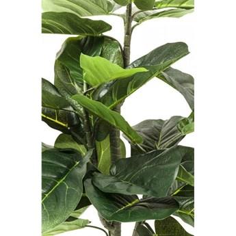 Roślina dekoracyjna Fiddle Leaf 120 cm