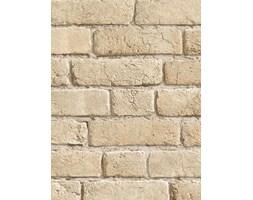 Koziel - Tapeta ścienna - Stare cegły 10m