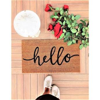 Wycieraczka Doormat Hello, 70x40 cm