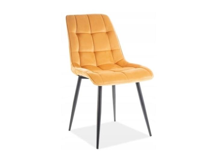 Krzesło CHIC VELVET Curry Signal Pikowane Wysokość 88 cm Szerokość 50 cm Tkanina Welur Metal Tapicerowane Z podłokietnikiem Głębokość 58 cm Stal Styl Nowoczesny