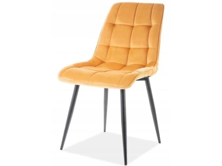 Krzesło CHIC VELVET Curry Signal Welur Pomieszczenie Salon Stal Wysokość 88 cm Tapicerowane Z podłokietnikiem Szerokość 50 cm Tkanina Pikowane Głębokość 58 cm Metal Styl Glamour
