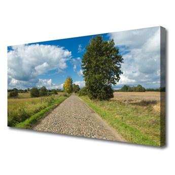Obraz na Płótnie Wieś Droga Bruk Krajobraz