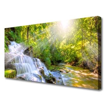 Obraz na Płótnie Wodospad Las Natura