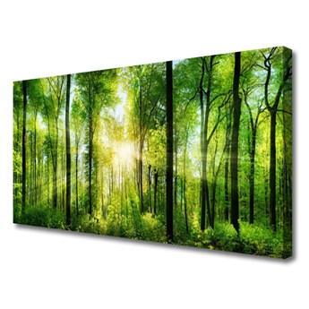 Obraz na Płótnie Las Natura Drzewa