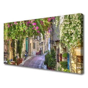 Obraz Canvas Alejka Kwiaty Domy Roślina