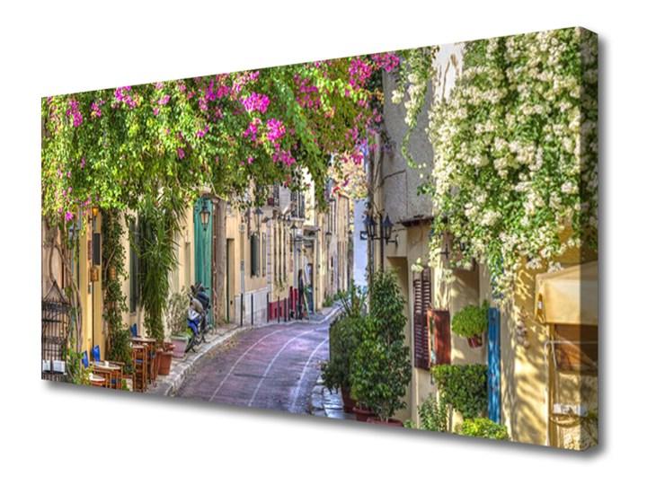 Obraz Canvas Alejka Kwiaty Domy Roślina Pomieszczenie Sypialnia Wymiary 70x140 cm