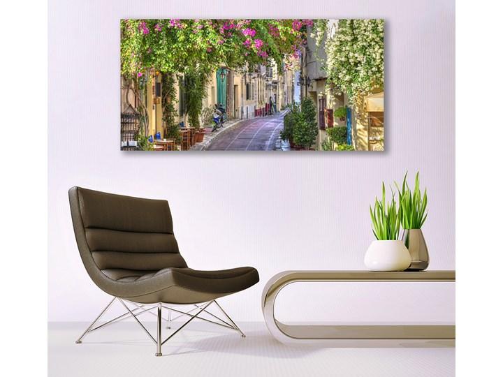 Obraz Canvas Alejka Kwiaty Domy Roślina Wymiary 50x125 cm Wymiary 50x100 cm