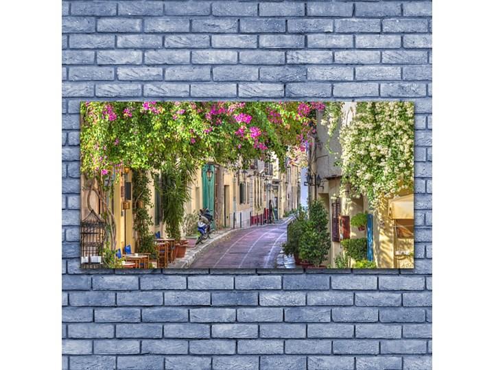 Obraz Canvas Alejka Kwiaty Domy Roślina Wzór Natura Wymiary 50x100 cm