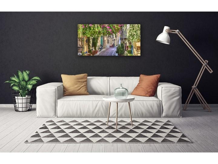 Obraz Canvas Alejka Kwiaty Domy Roślina Wymiary 50x125 cm Wzór Natura