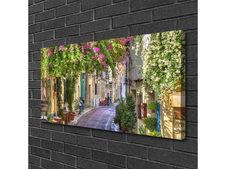 Obraz Canvas Alejka Kwiaty Domy Roślina Kategoria Obrazy Wymiary 50x100 cm