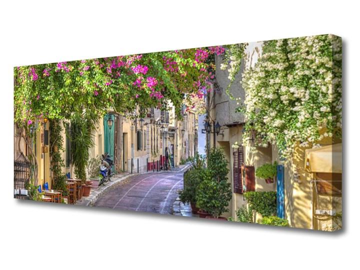 Obraz Canvas Alejka Kwiaty Domy Roślina Wzór Natura
