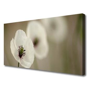 Obraz Canvas Kwiat Roślina Natura