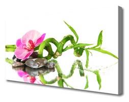 Obraz Canvas Bambus Kwiat Kamienie Sztuka