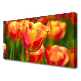 Obraz Canvas Tulipany Kwiaty Roślina