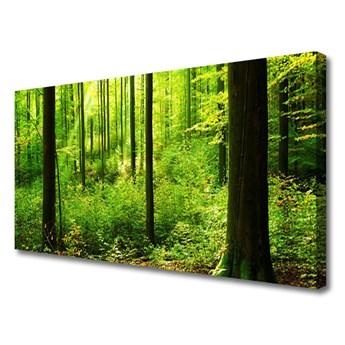 Obraz Canvas Las Zieleń Drzewa Natura
