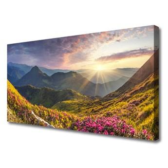 Obraz Canvas Góra Łąka Słońce Krajobraz
