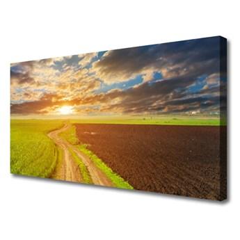 Obraz Canvas Pole Niebo Słońce Przyroda