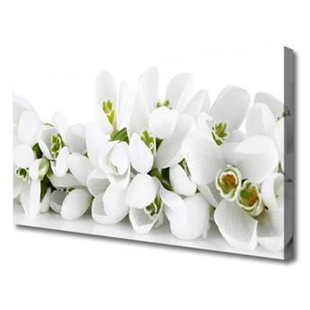 Obraz Canvas Kwiaty Roślina Natura