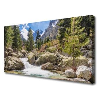 Obraz Canvas Góra Las Kamienie Rzeka