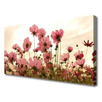 Obraz Canvas Kwiaty Polne Łąka Natura