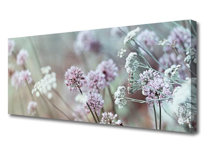 Obraz Canvas Kwiaty Polne Łąka Natura Wykonanie Wymiary 50x125 cm