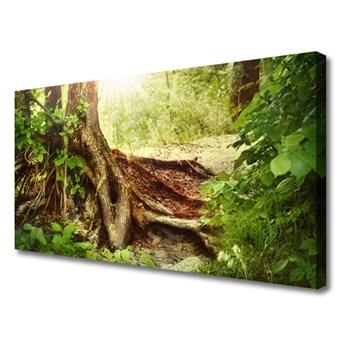 Obraz Canvas Drzewo Pień Natura Las