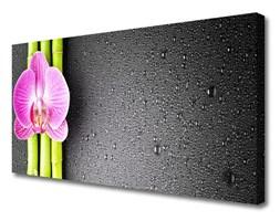Obraz Canvas Bambus Kwiaty Orchidea
