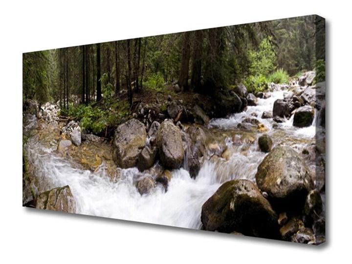 Obraz Canvas Las Rzeka Wodospady