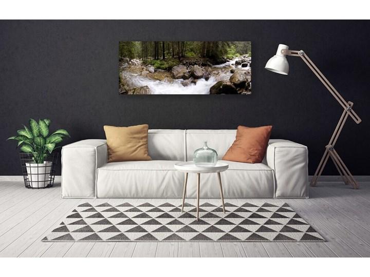 Obraz Canvas Las Rzeka Wodospady Pomieszczenie Salon