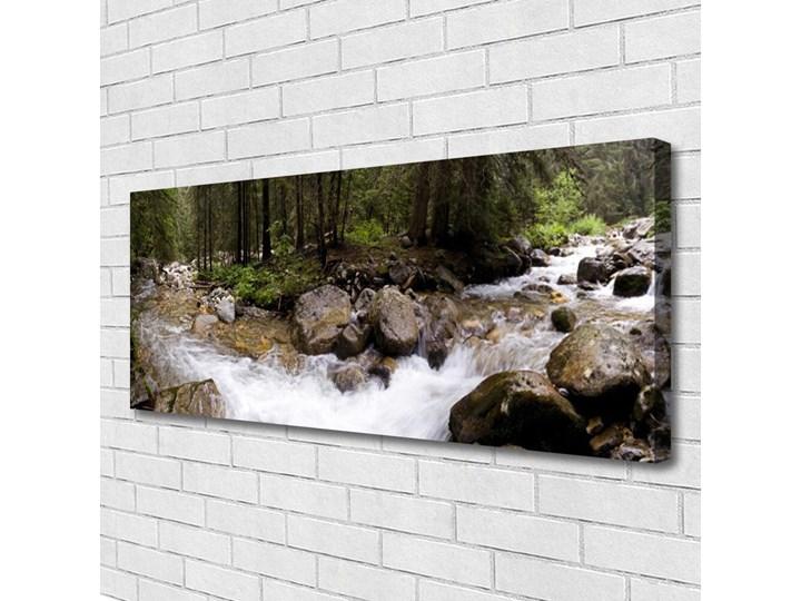 Obraz Canvas Las Rzeka Wodospady Wykonanie Pomieszczenie Sypialnia