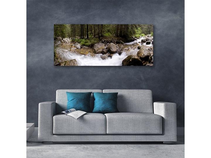 Obraz Canvas Las Rzeka Wodospady Wymiary 50x100 cm