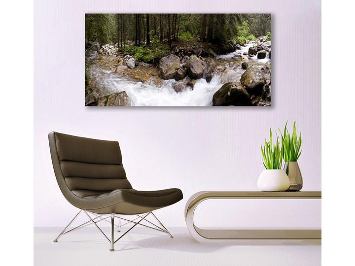 Obraz Canvas Las Rzeka Wodospady Kategoria Obrazy