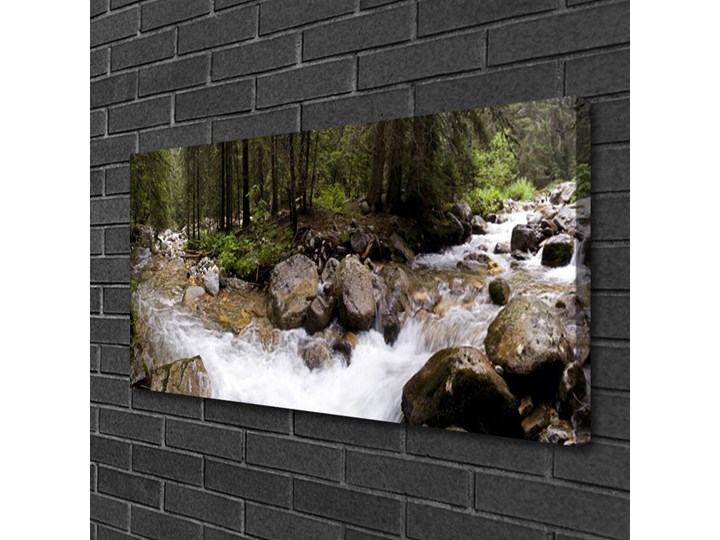 Obraz Canvas Las Rzeka Wodospady Wymiary 60x120 cm Pomieszczenie Biuro i pracownia