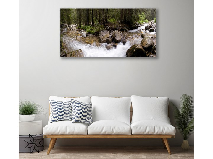 Obraz Canvas Las Rzeka Wodospady Pomieszczenie Sypialnia