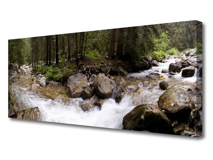 Obraz Canvas Las Rzeka Wodospady Pomieszczenie Biuro i pracownia Wymiary 50x100 cm