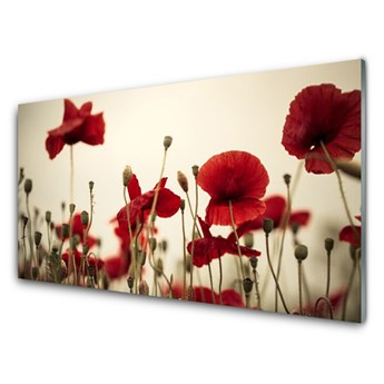 Obraz na Szkle Maki Kwiaty